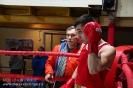 Турнир Ударная сила 10 20-24 апреля 2016 клуб бокса Ударник_17