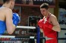 Турнир Ударная сила 10 20-24 апреля 2016 клуб бокса Ударник_26