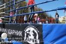 Фестиваль спорта в Измайловском парке 26 апреля 2014_45