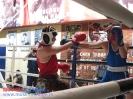 Открытый ринг - боксерский клуб Ударник Волгоградский проспект 14 мая 2016_18