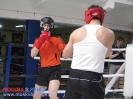 Открытый ринг - боксерский клуб Ударник Волгоградский проспект 14 мая 2016_41