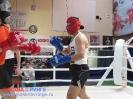 Открытый ринг - боксерский клуб Ударник Волгоградский проспект 14 мая 2016_44
