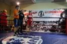 Открытый ринг по боксу в БК Ударник 1 февраля 2015_25