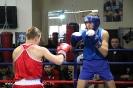 Открытый ринг по боксу в БК Ударник 30 ноября 2014_11