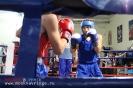 Открытый ринг по боксу в БК Ударник 30 ноября 2014_27