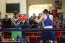Открытый ринг по боксу в БК Ударник 31 октября 2015 Тушинская_18