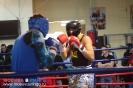 Открытый ринг по боксу в БК Ударник 31 октября 2015 Тушинская_38