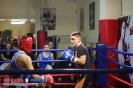 Открытый ринг по боксу в БК Ударник 31 октября 2015 Тушинская_83