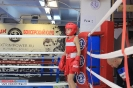 Фото боев. Открытый ринг по боксу в БК Ударник на Кожуховской - 29 сентября._1