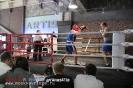 Открытый ринг Arma Artis 27 сентября 2014_1